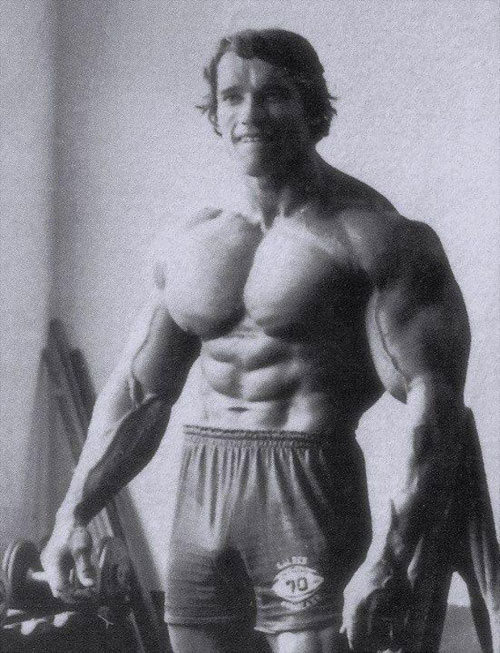 Just can't get past those arms #Arnold #hulk #bodybuilding #gorilla