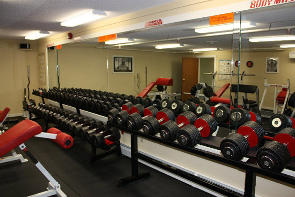 The ultimate dumbbell collection for a garage gym