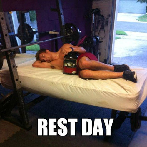 Pretty sweet situation here - Gold Standard Whey and a mattress on your bench