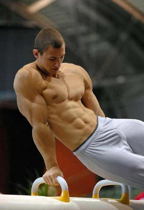 Gymnastics - Sure ok he's buff #horse #gymnasts #ripped