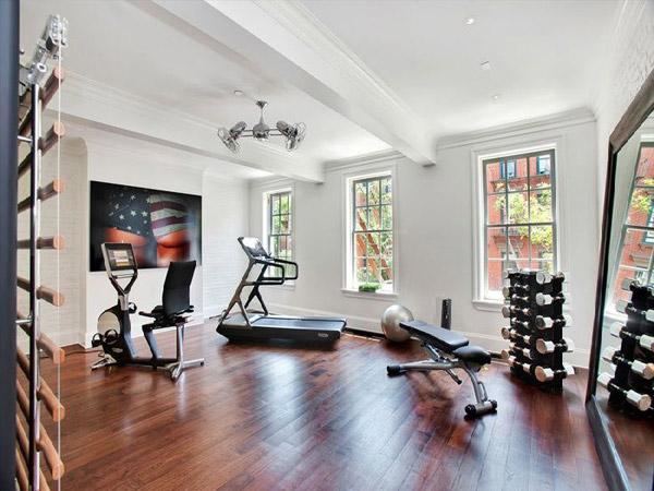 Fancy home gym