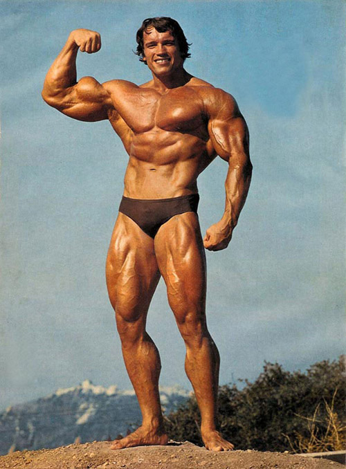 Arnold - meh, not that big #champ #oak
