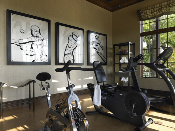 Well decorated home gym - I wonder what all that cardio equipment is facing