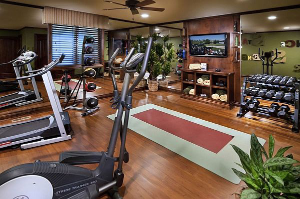 well decorated home gym with lots of cardio and conditioning equipment - even plants to pretty it up