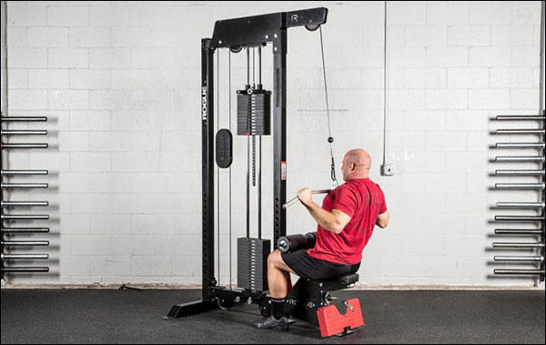 Rogue Stand Alone Lat Pulldown / Low Row Machine