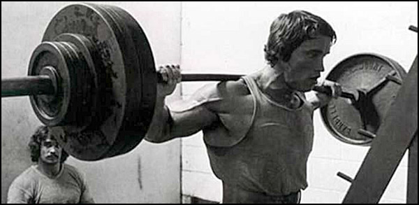 Great Garage Gym Workout Programs, including Arnold's Blueprint