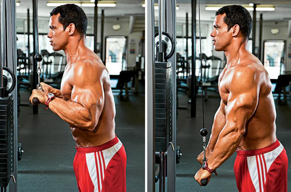 Free-weight and Body-weight Alternatives to the Tricep Pushdown