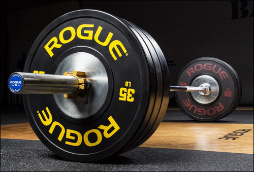 Rogue Training Bumper Plates 2.0 in black
