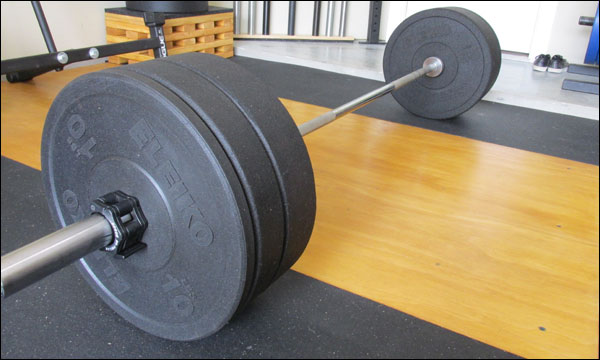 Image result for bumper plates crossfit
