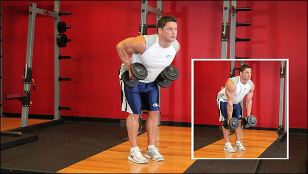 Bent-Over Dumbbell Rows - Garage Gym alternative to the seated cable row (image courtesy of bodybuilding.com)