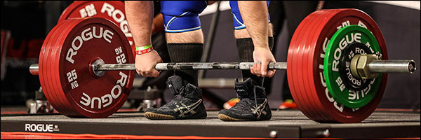 New Rogue Calibrated Steel Powerlifting Discs