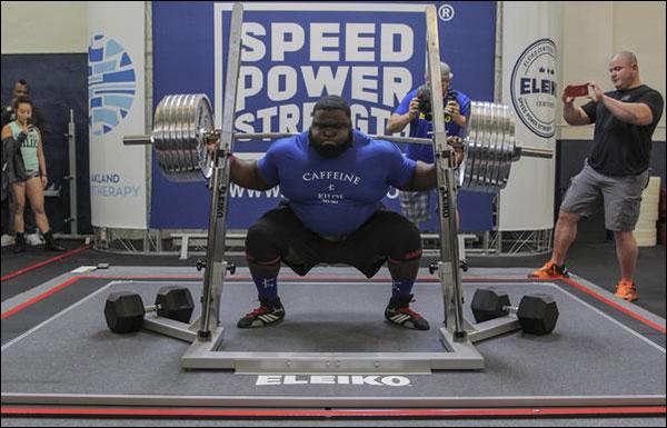 Eleiko Powerlifting Bars