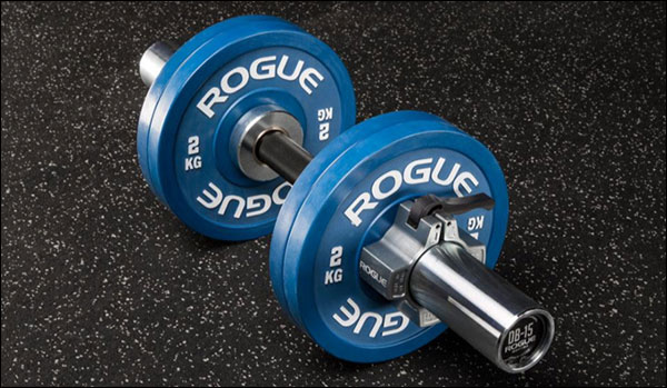 Rogue Loadable Dumbbell Handles with rubber change plates