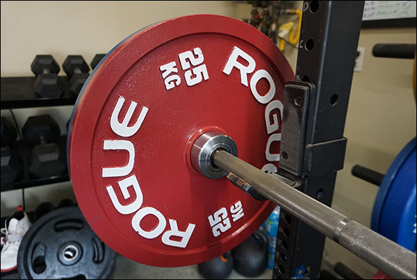 Rogue Calibrated Steel Powerlifting Discs
