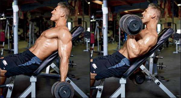 Incline Dumbbell Curls isolate the biceps very well with no special equipment