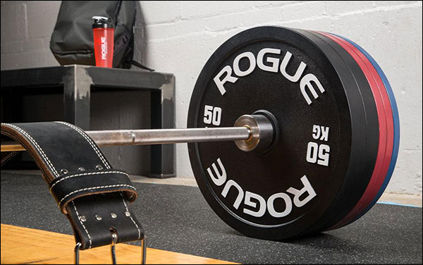 Rogue Fitness 50 kg Calibrated Steel Powerlifting Discs