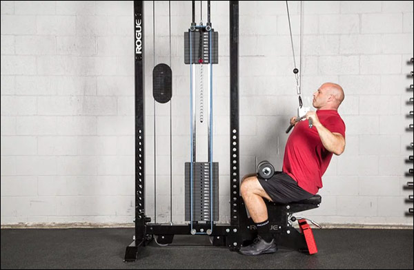 Rogue Monster Stand Alone Lat Pulldown / Mid Row Machine